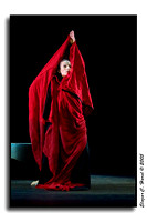 Martha Graham Dance Company (40789819)
