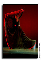 Martha Graham Dance Company (40789821)